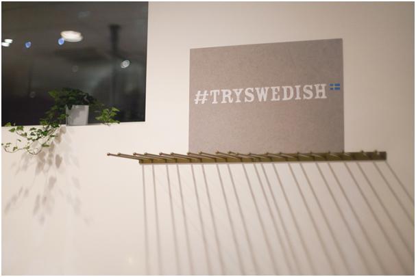 TrySwedish 04